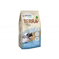 Terra Souris/Hamster nain -...