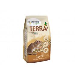 Terra Gerbille - 700g