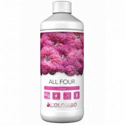 Colombo Marine, All Four - 1L