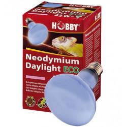 """Lampe Hobby """"Neodymium..."""