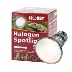 Spot halogène - 50W