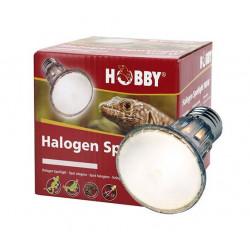 Spot halogène Hobby - 100W