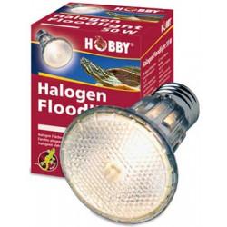 Spot halogène éclairage...