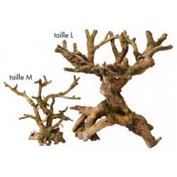 Décors d'arbre AQUA DELLA...