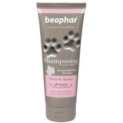 Shampooing premium tous...