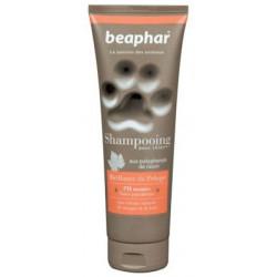 Shampooing premium chien...