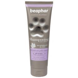 Shampooing premium...